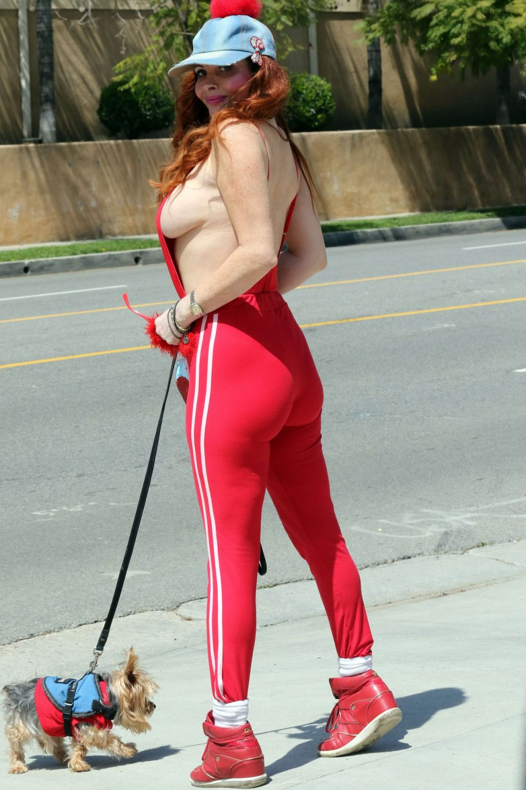 Busty Phoebe Price Walks Her Dog in Los Angeles (18 Photos)