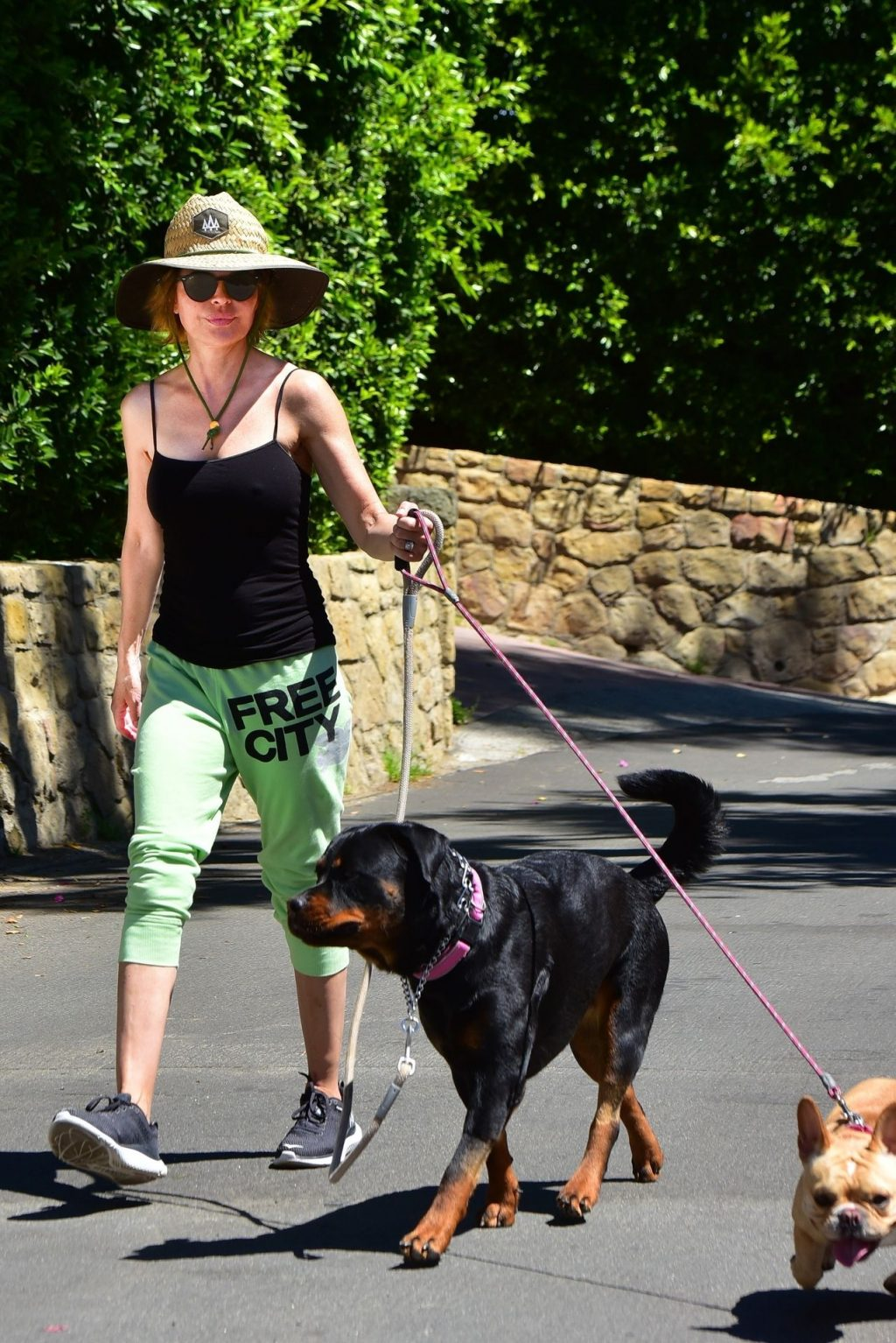 Braless Lisa Rinna Has a Hard Time Holding Her Dogs While Out During a Walk in Hollywood (23 Photos)