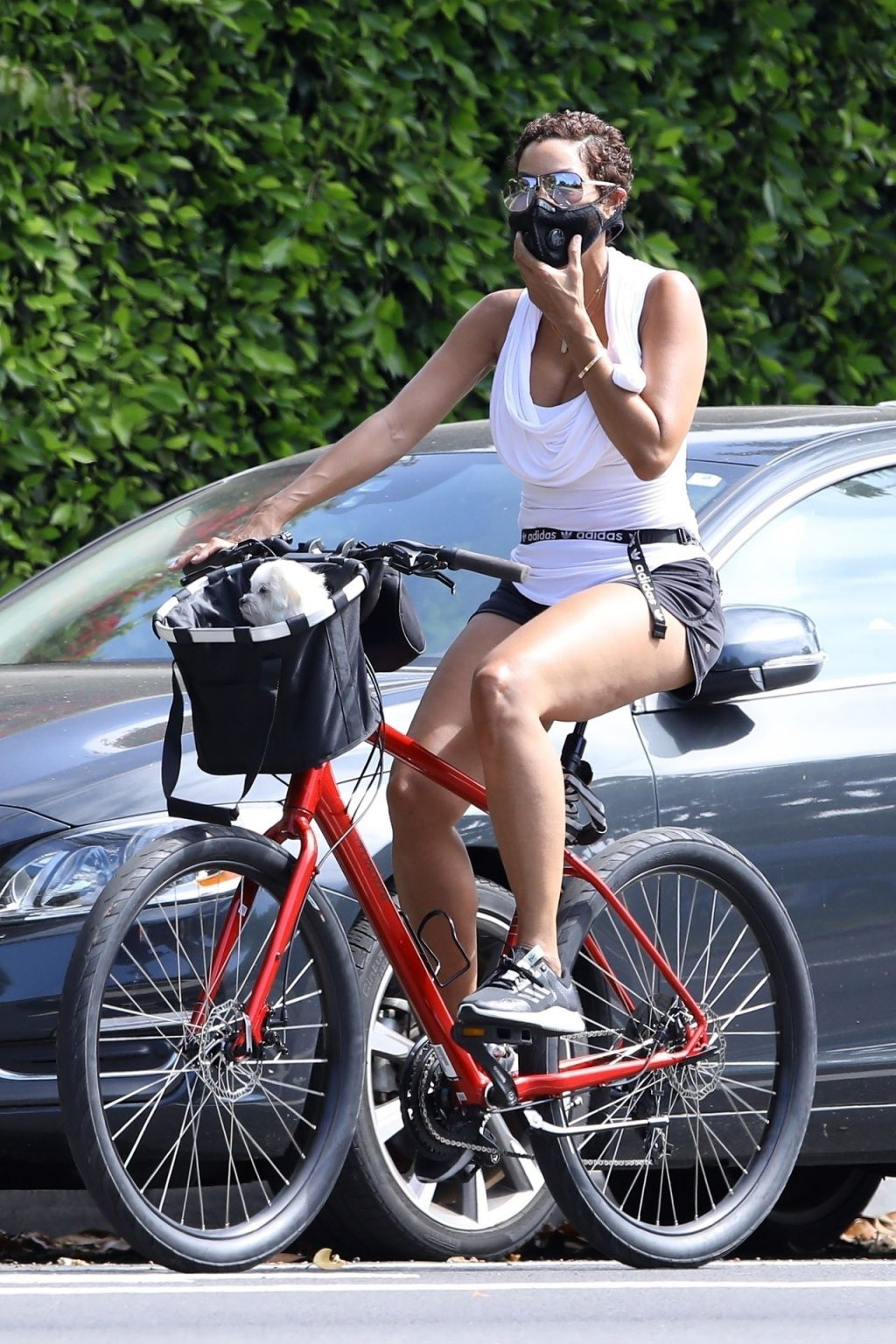 Nicole Murphy and Her Pet Pooch Go for a Bike Ride (16 Photos)
