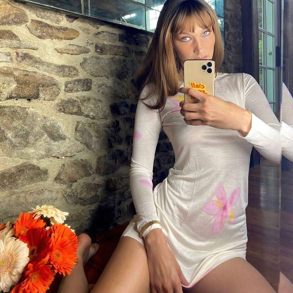 Bella Hadid Displays Her Tits (5 Photos)
