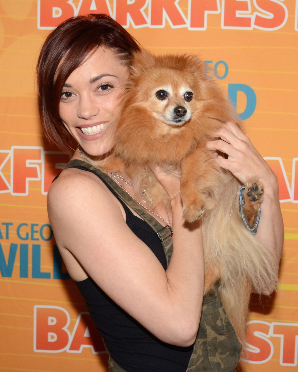 Jessica Sutta Looks Sexy at the Barkfest (4 Photos)