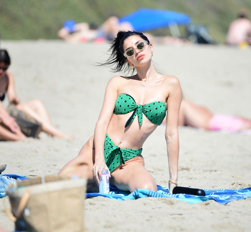 Nicole Williams Shows Off Her Amazing Bikini Body at the Beach (13 Photos)