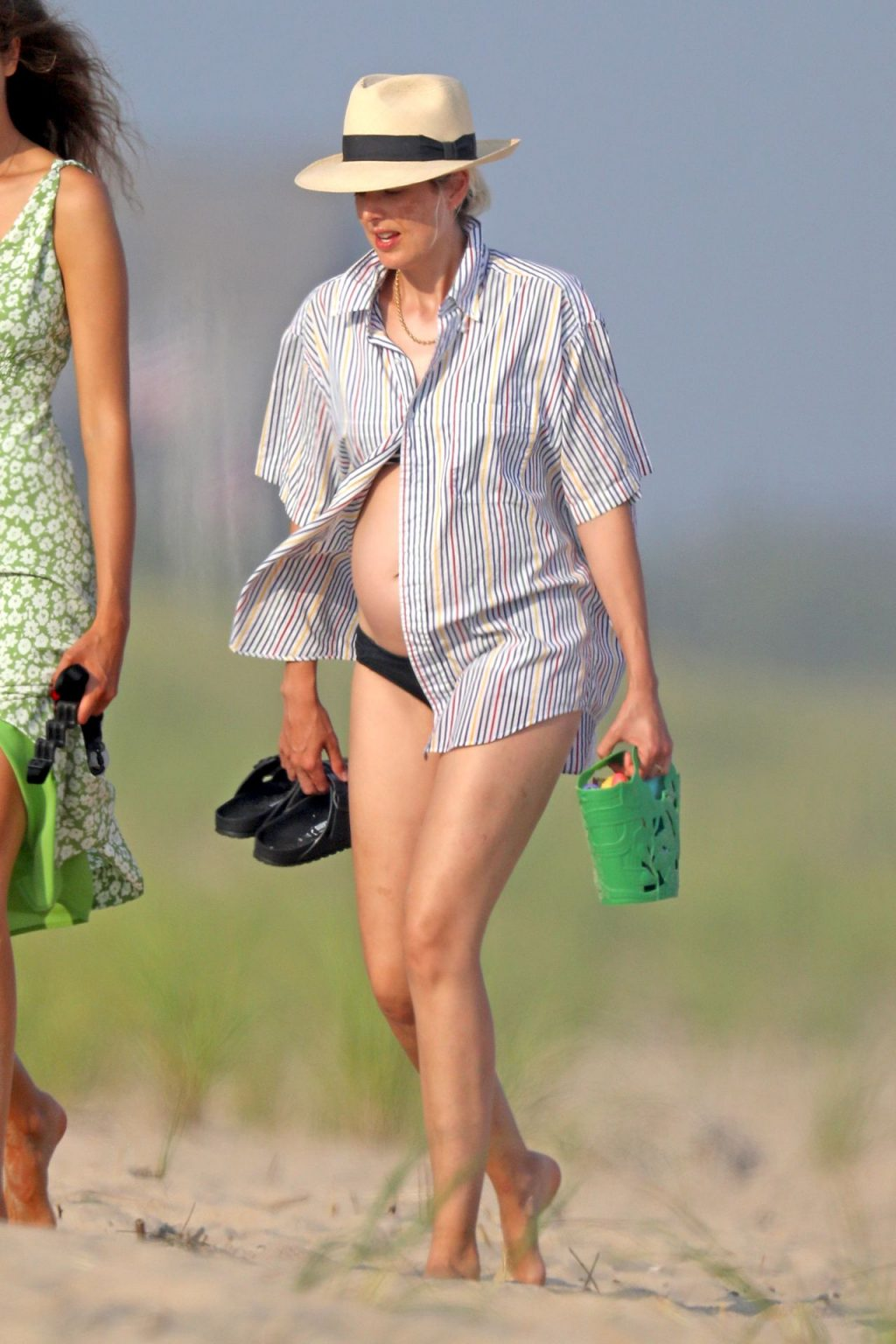 Agyness Deyn is Spotted in a Bikini on the Beach in The Hamptons (25 Photos)