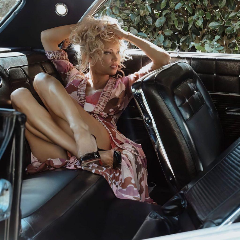 Pamela Anderson Sexy (29 New Photos)