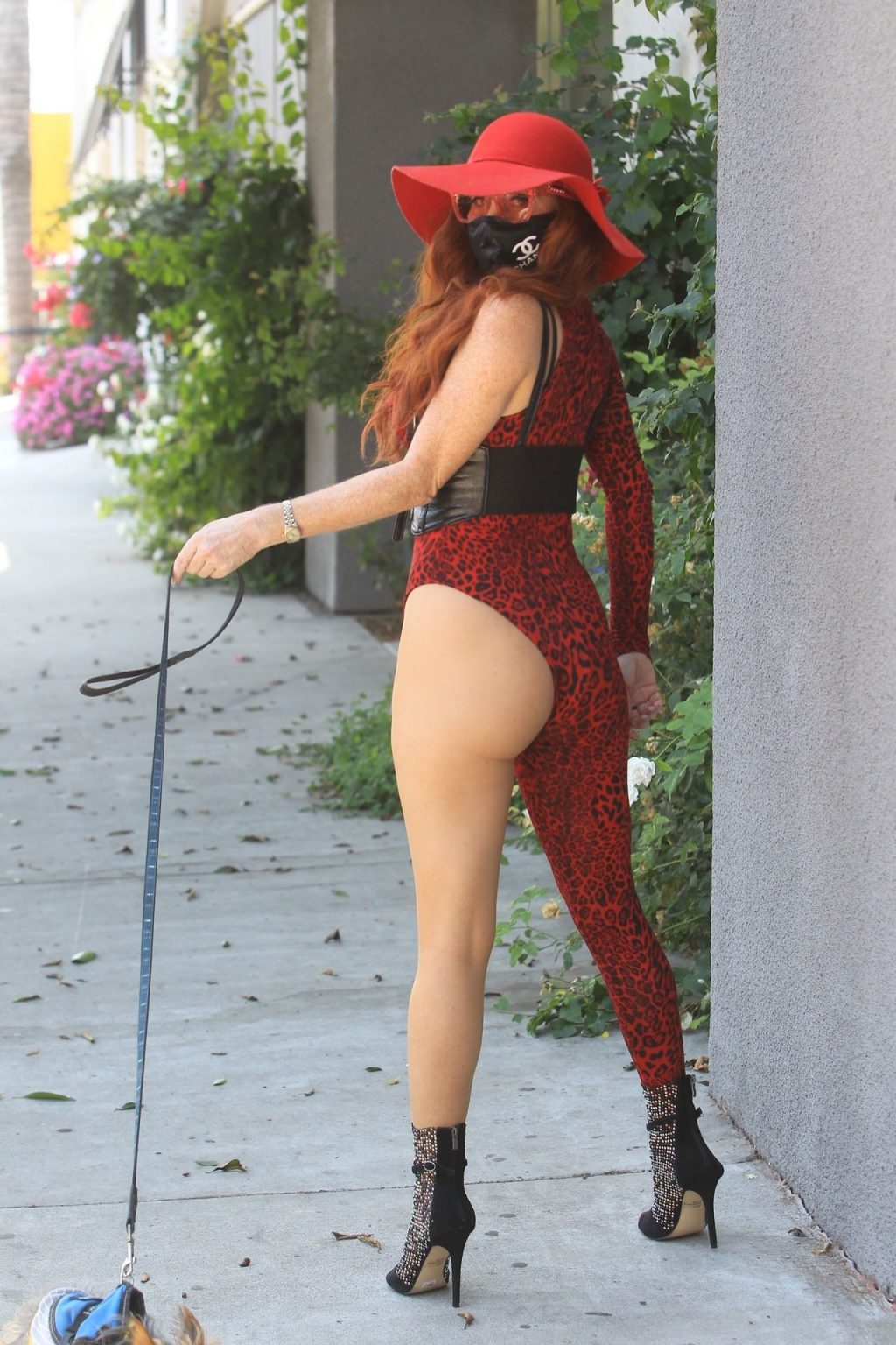 Phoebe Price Walks Her Dog in Hollywood (17 Photos)