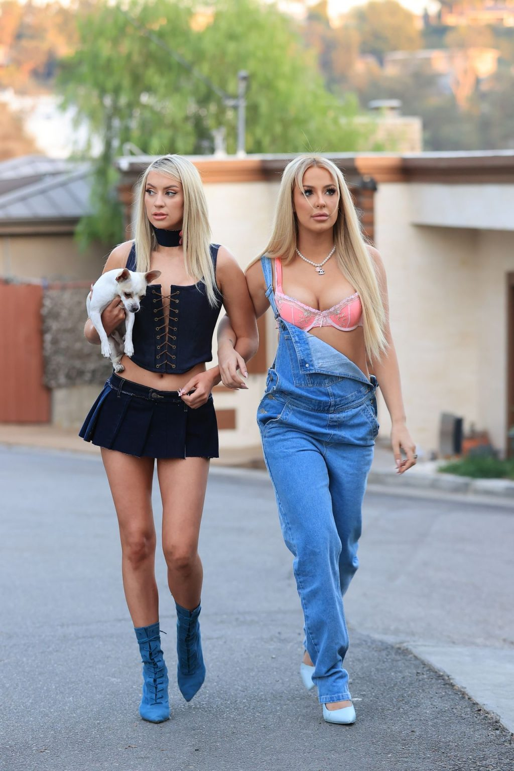 Tana Mongeau & Ashley Schwan Dress Up Like Paris and Nicole from The Simple Life for Halloween (25 Photos)
