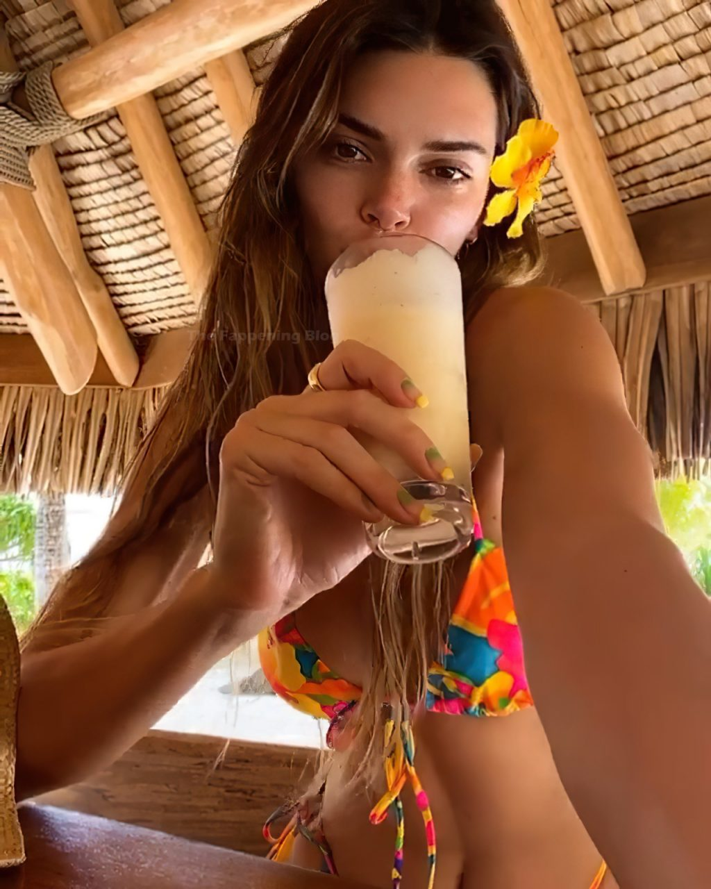 Kendall Jenner Shows Off Her Sexy Figure in Bikinis (7 Pics + Videos)