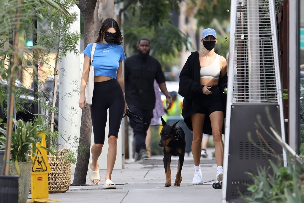 Kendall Jenner & Hailey Bieber Head to Lunch in WeHo (13 Photos)