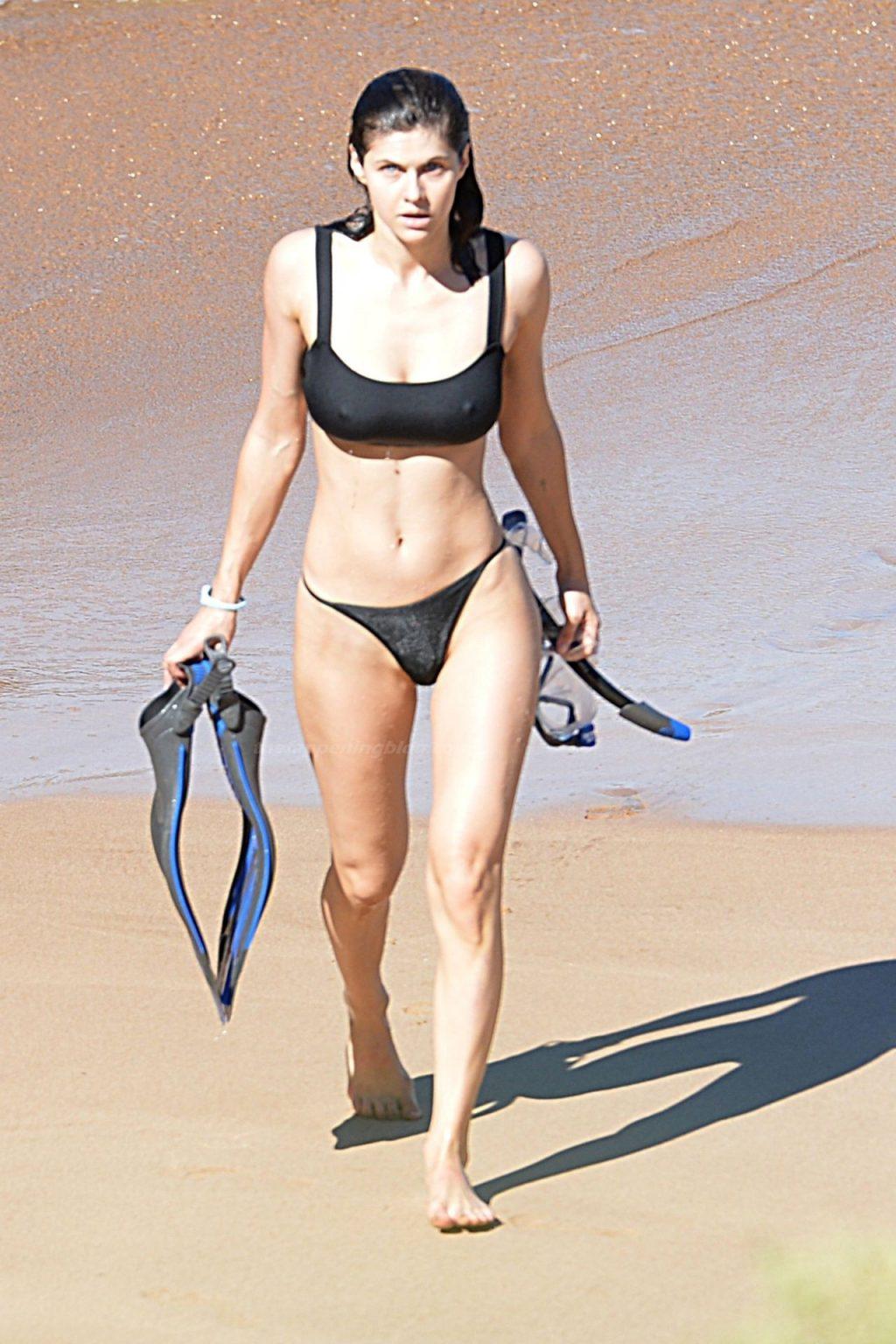 Alexandra Daddario Stuns in a Black Bikini Snorkeling in Hawaii (12 Photos)