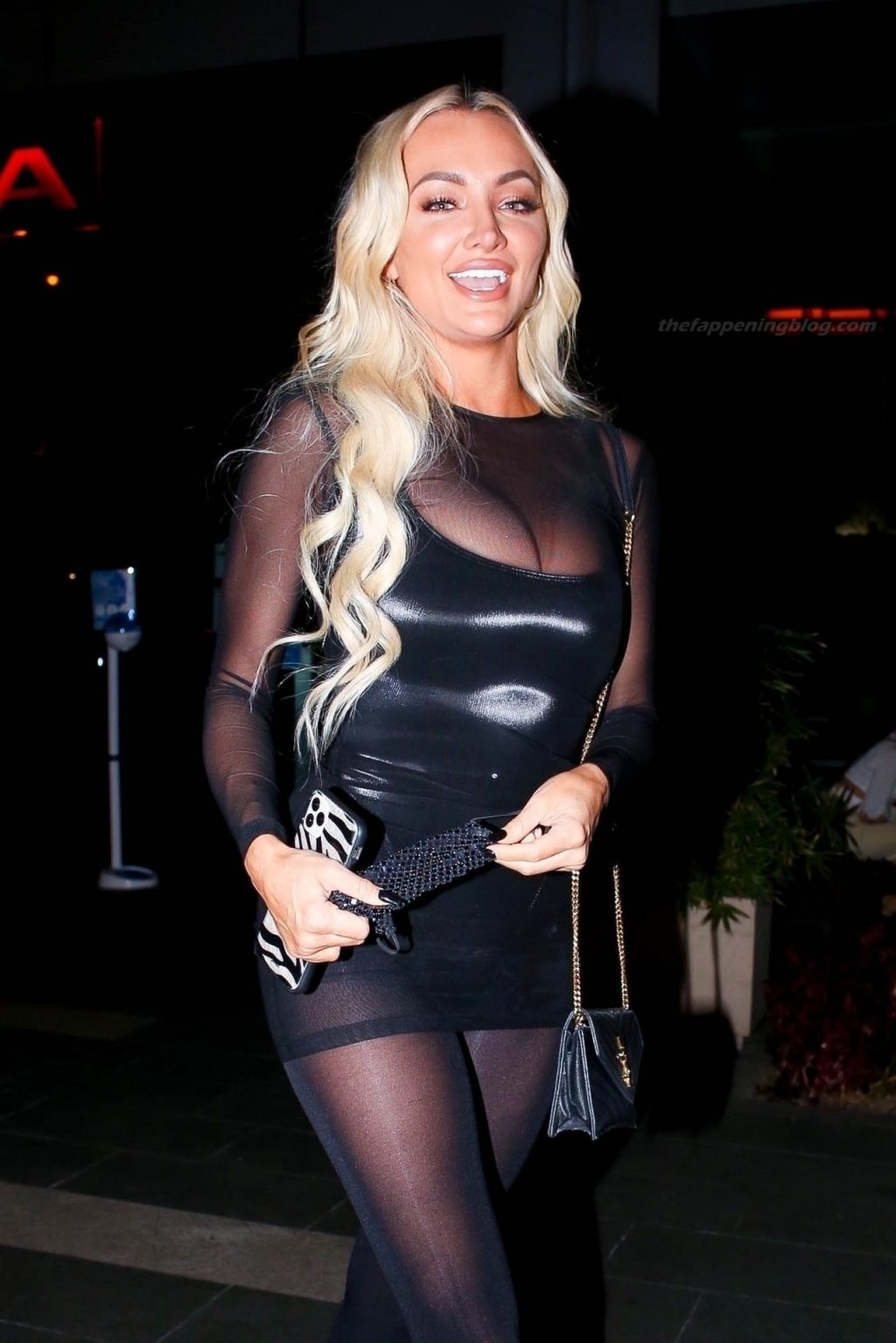 Lindsey Pelas Puts on a Busty Display as She Enjoys a Night in WeHo (34 Photos)