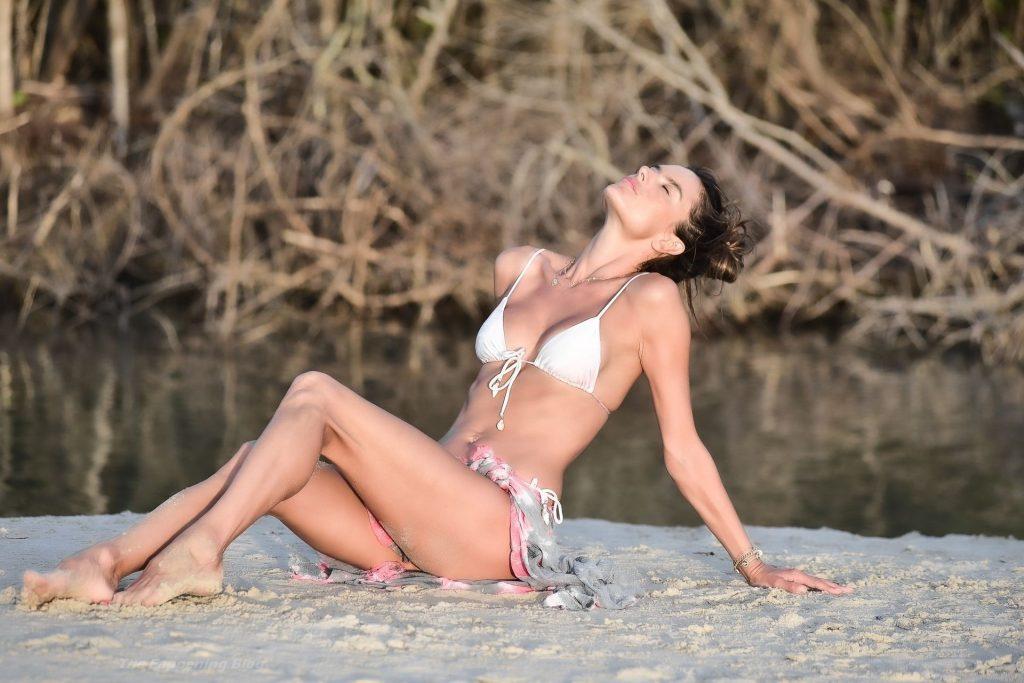 Alessandra Ambrosio Parades Her Beauty on a Sunny Day (43 Photos)
