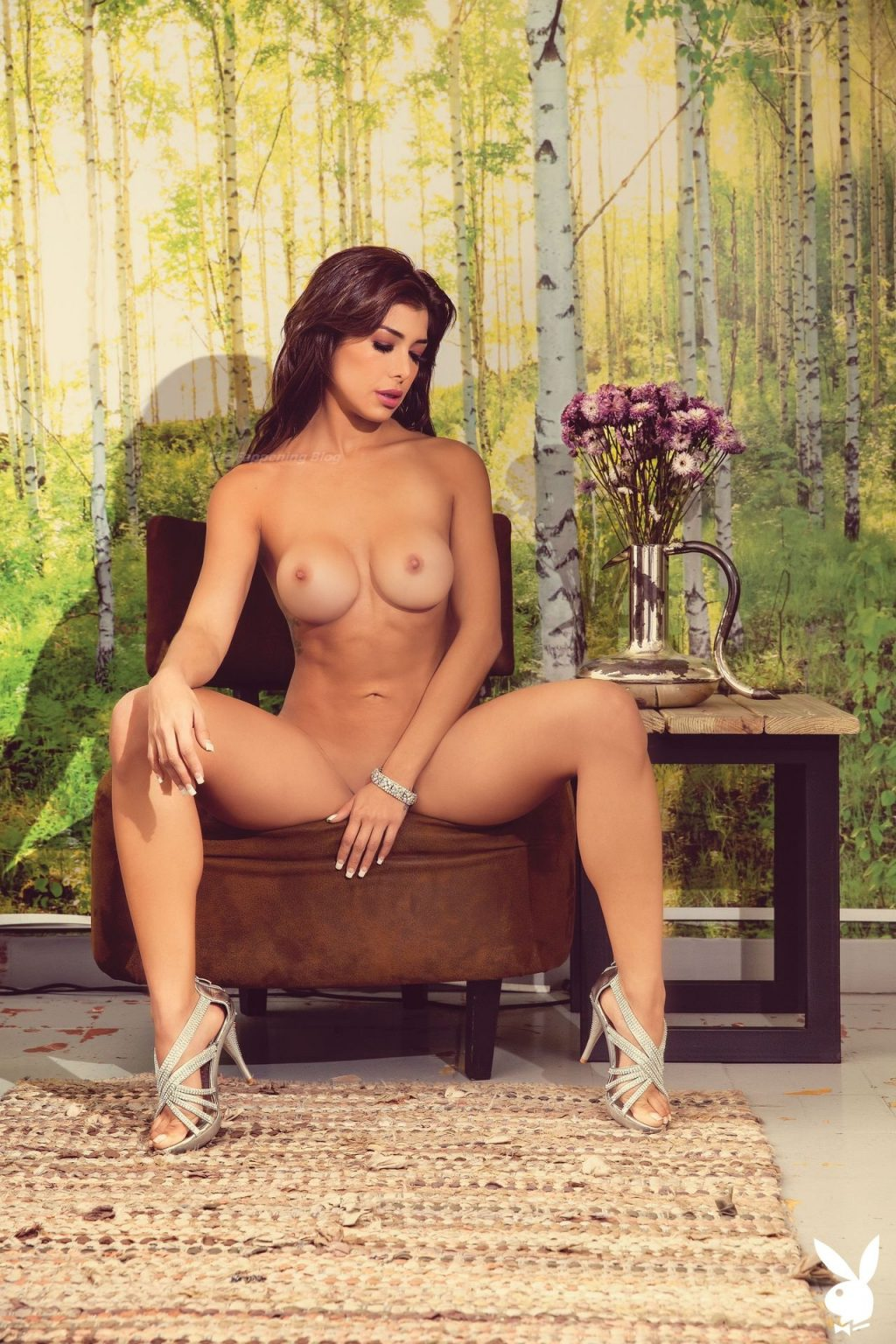 Ana Espinola Nude