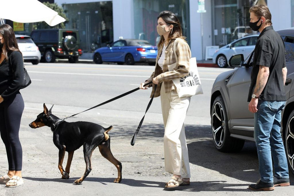 Kendall Jenner is Seen Braless Having Lunch in WeHo (71 Photos)