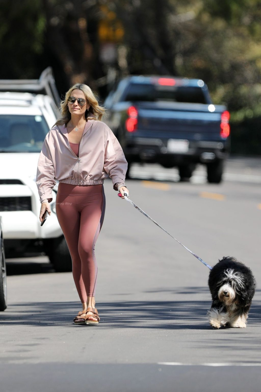 Molly Sims Snaps Selfies with Her Dog During a Morning Stroll (37 Photos)