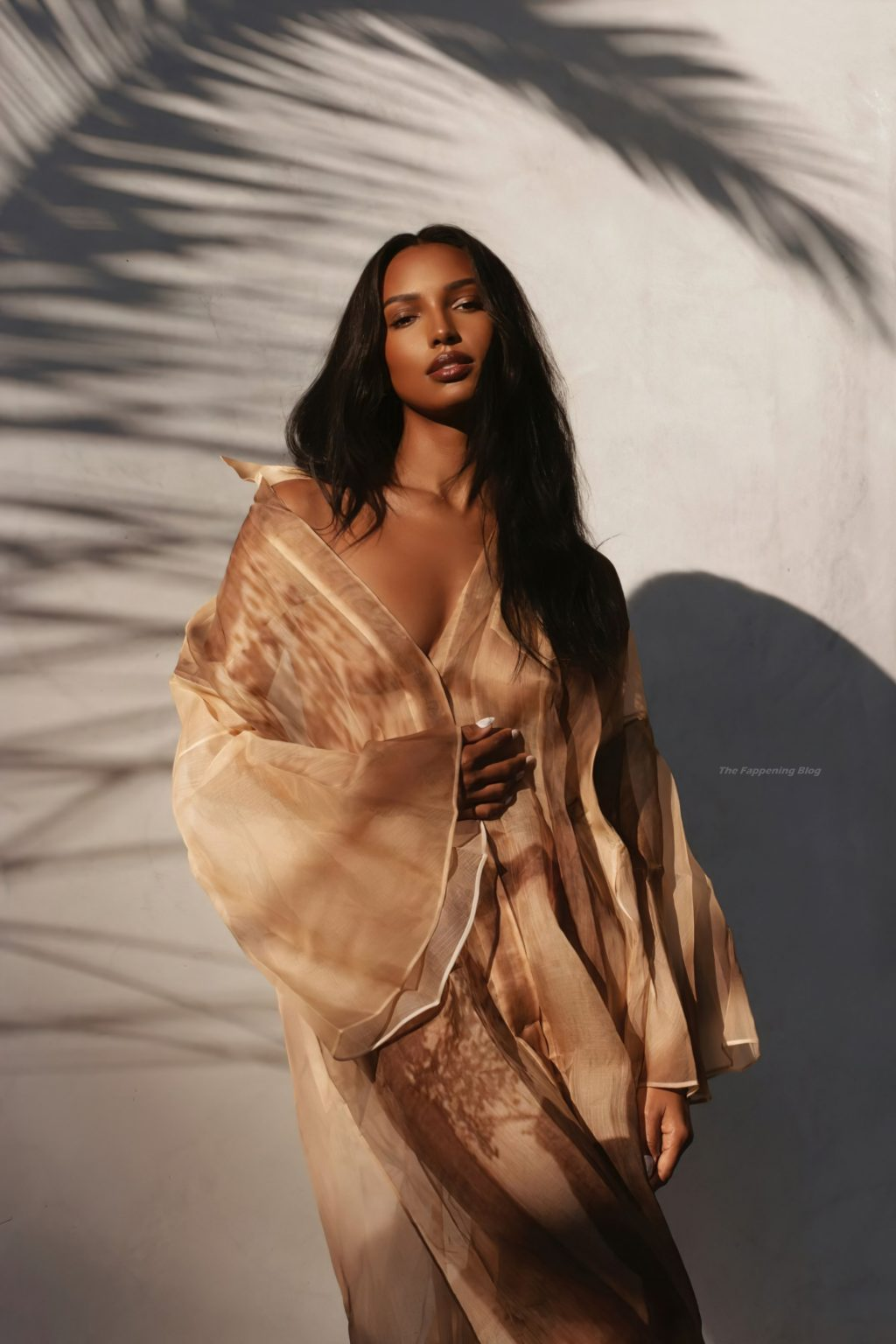 Jasmine Tookes Sexy (10 Photos)