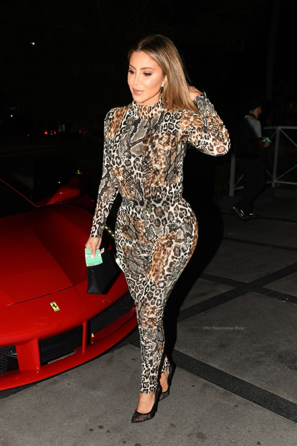 Larsa Pippen Looks Sexy in An Animal Print Catsuit (22 Photos)