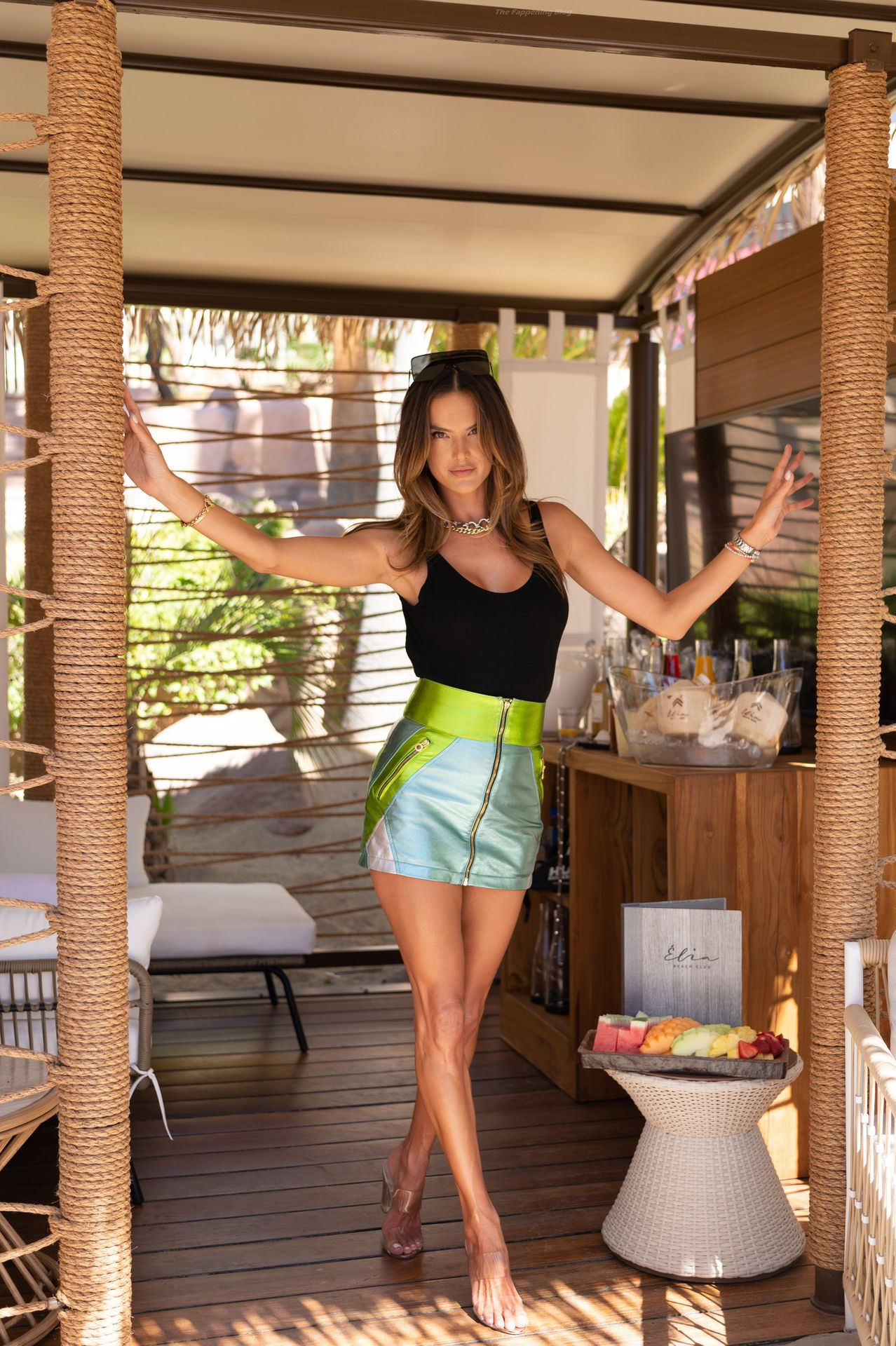 Alessandra-Ambrosio-Sexy-7-thefappeningblog.com_.jpg
