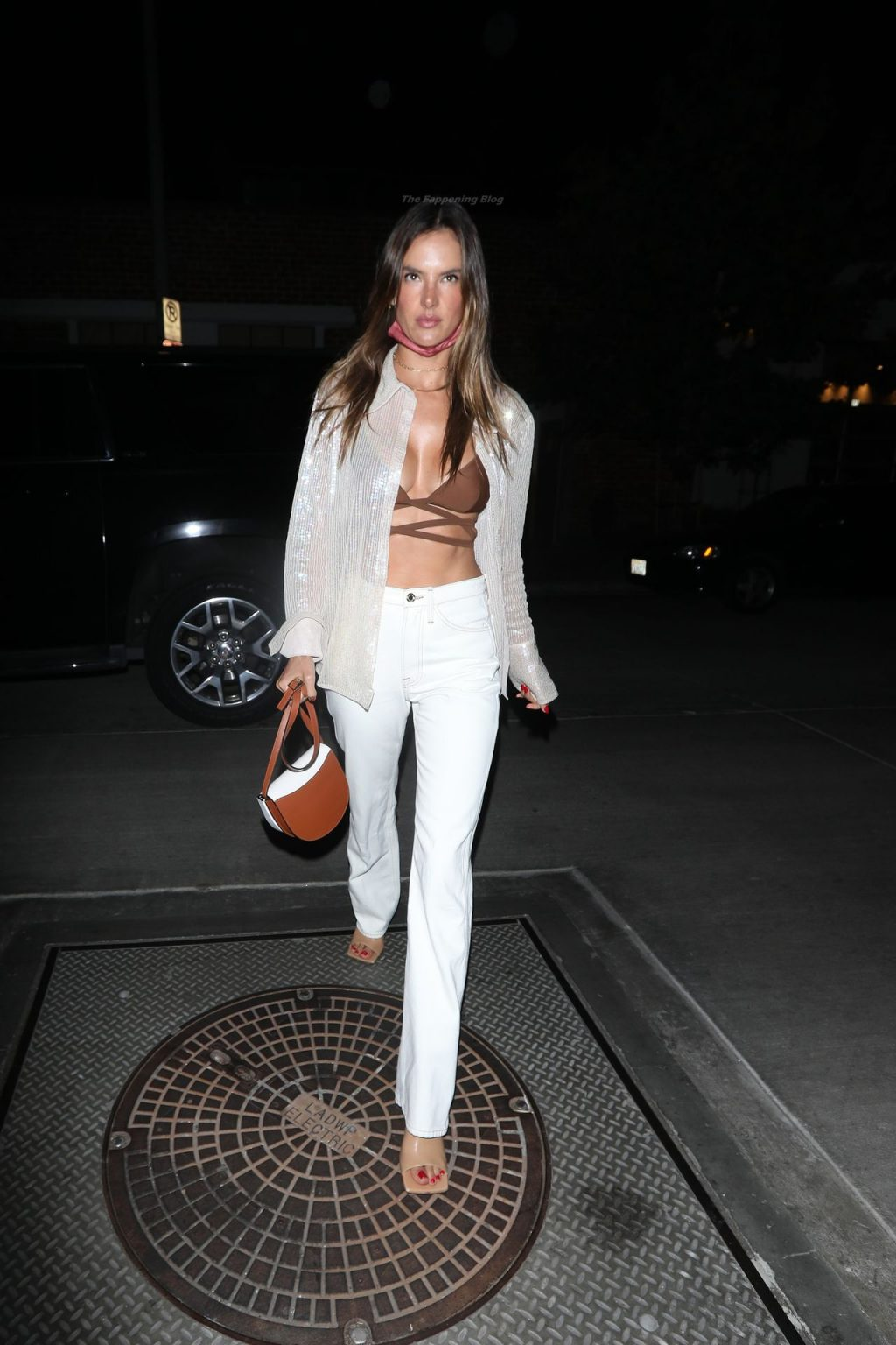Alessandra Ambrosio Shows Off Her Toned Abs As She Grabs Dinner at Gigi's Restaurant (15 Photos)