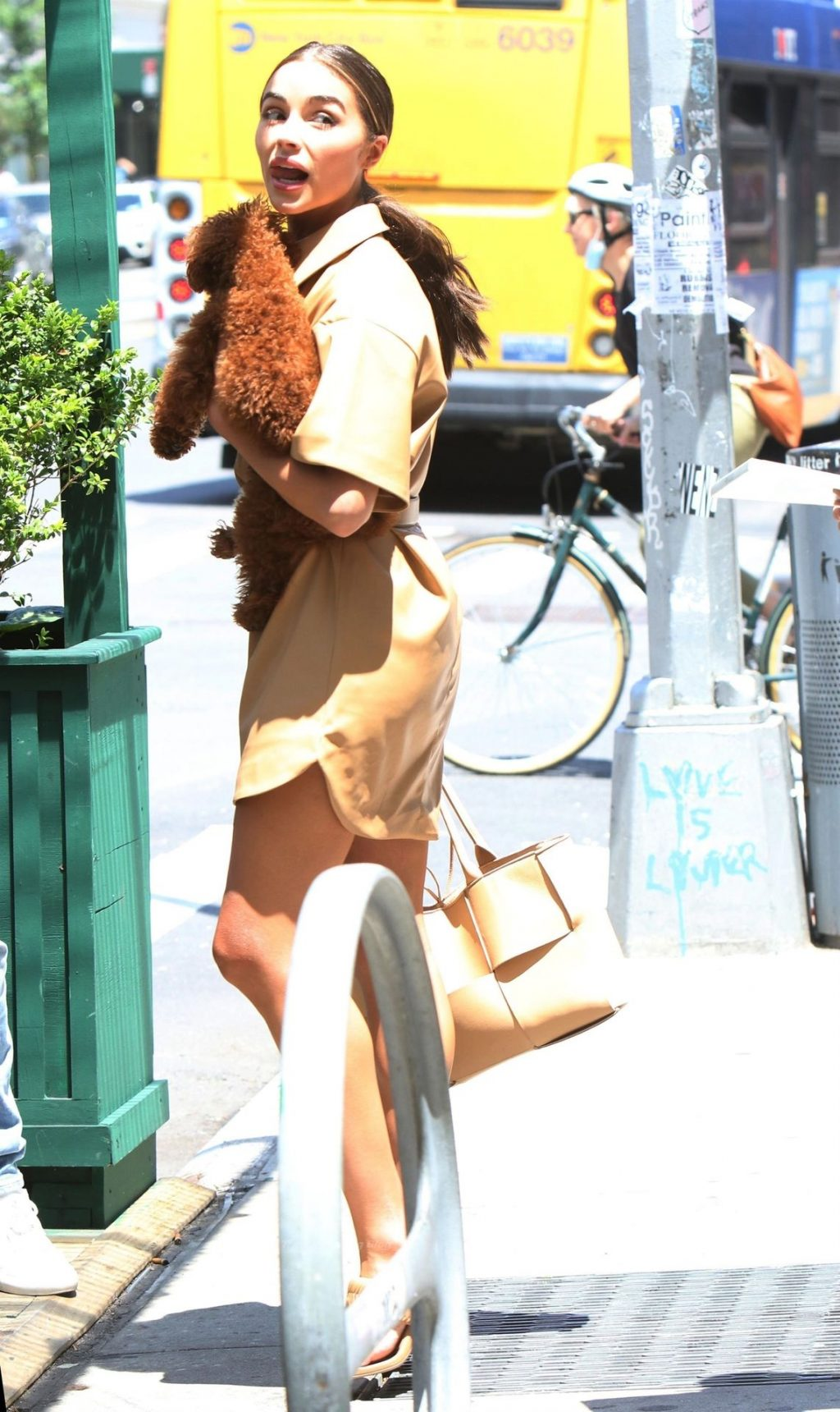 Leggy Olivia Culpo Steps Out in Neutral Browns For a Walk with Adorable Pooch (22 Photos)