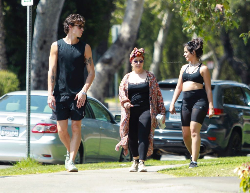 Camila Cabello & Shawn Mendes Take a Stroll in Beverly Hills (96 Photos)