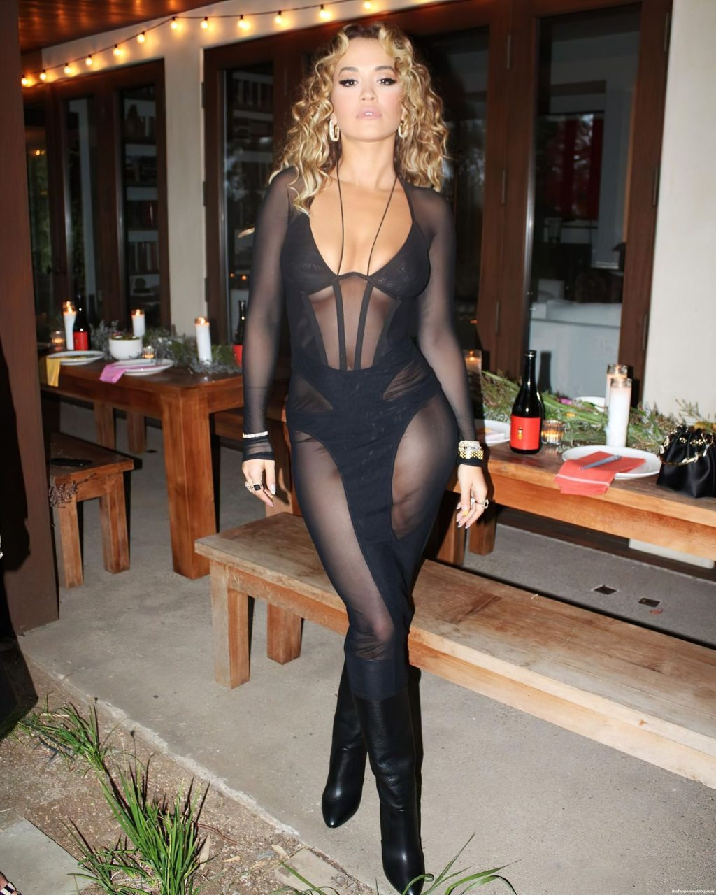 Rita Ora Looks Sexy at The Party (12 Photos)