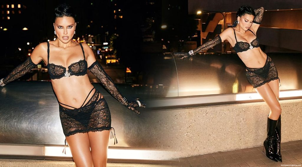 Adriana Lima Flaunts Her Stunning MILF Body in Lingerie (5 Photos)