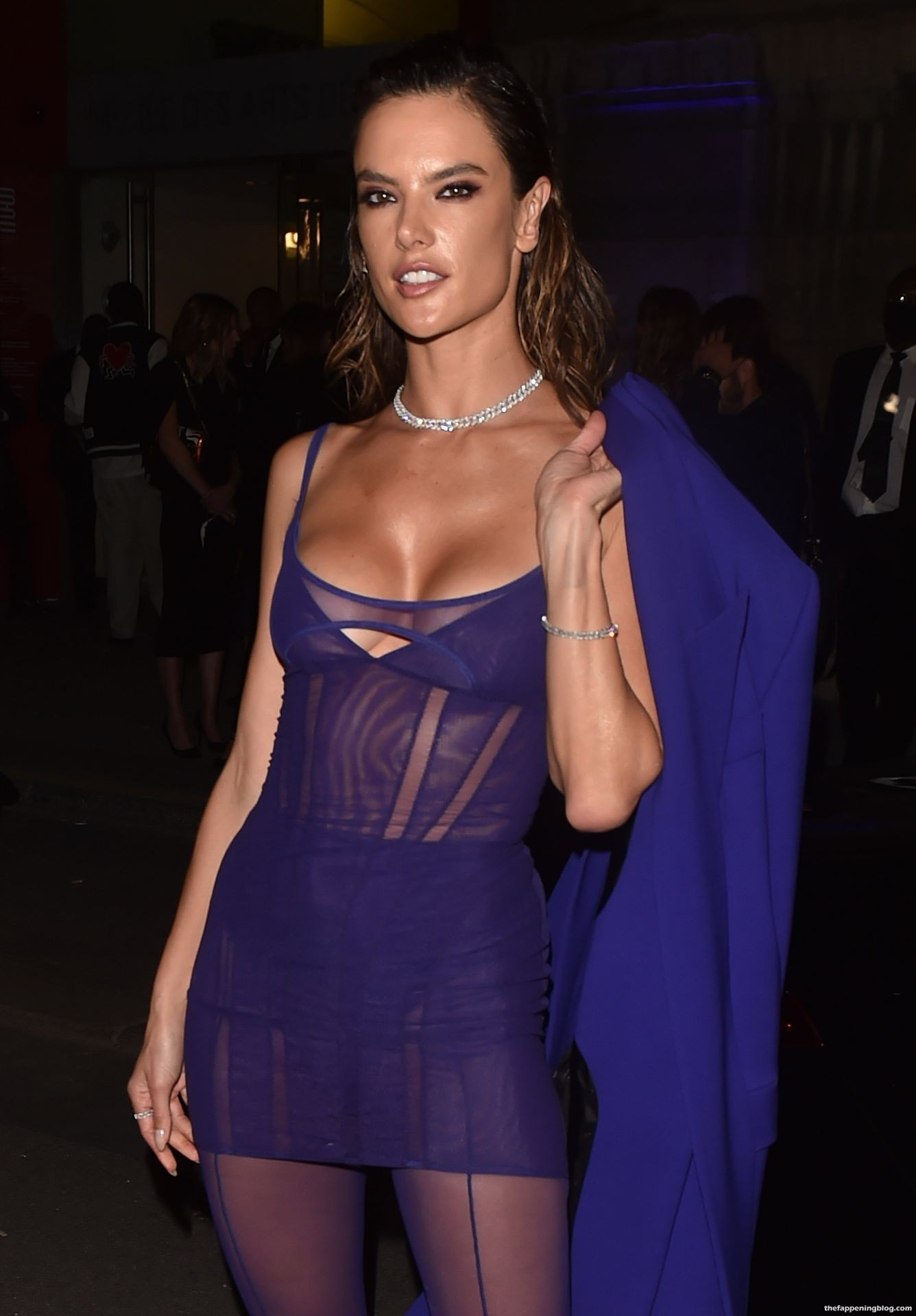 Alessandra-Ambrosio-Sexy-The-Fappening-Blog-20-3.jpg