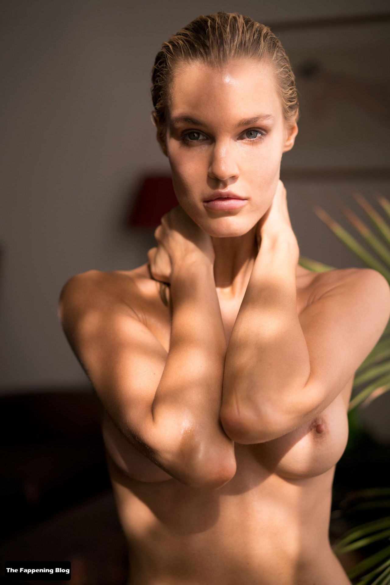 Joy Corrigan Nude Tits 12