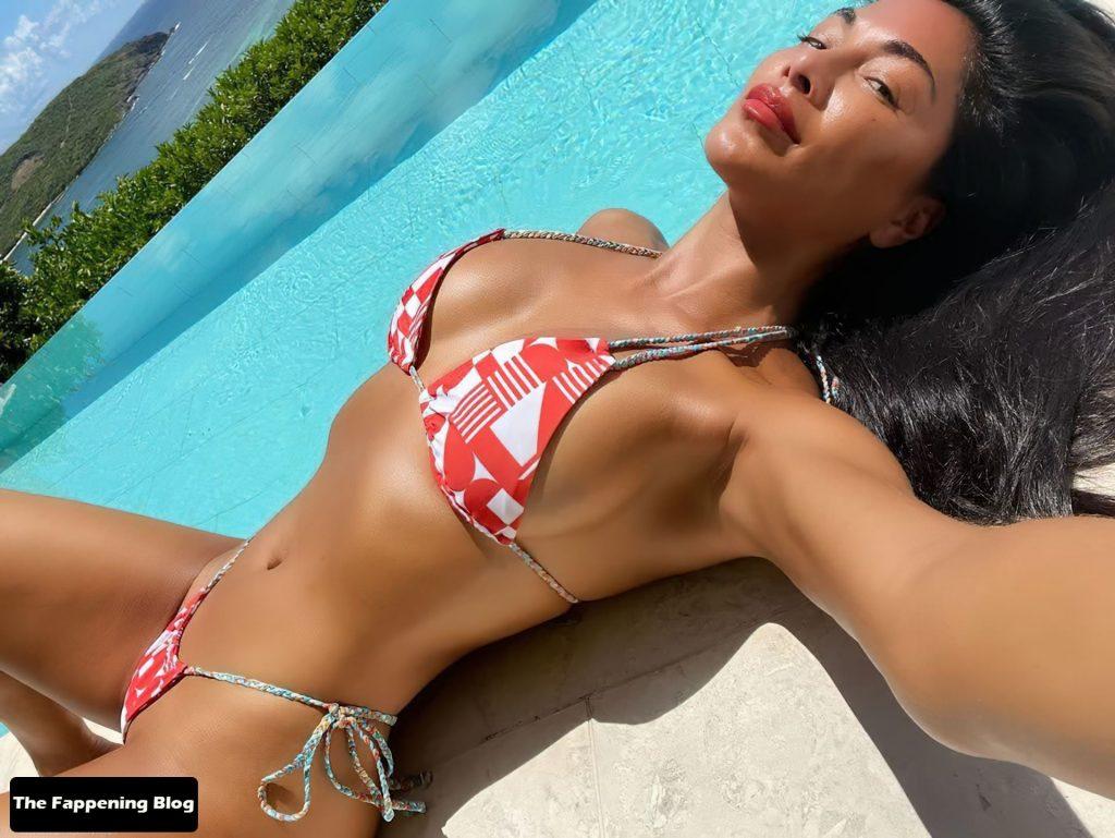 Nicole Scherzinger Shows Her Sexy Tits in a Bikini (7 Photos)